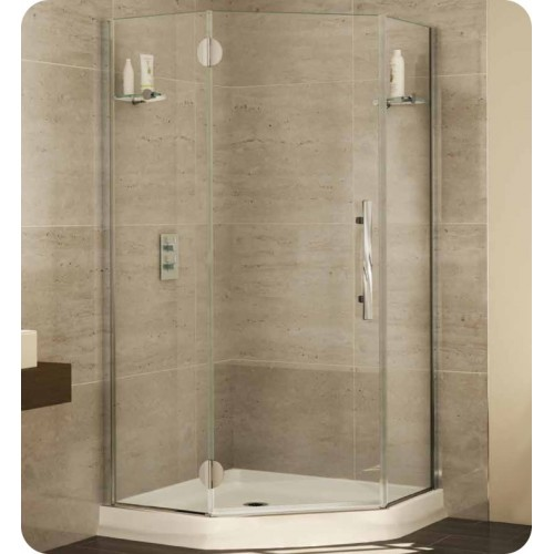 Fleurco PGNA Platinum Neo Angle Single Shower Door with Glass to Glass Hinges and Glass Shelf Support